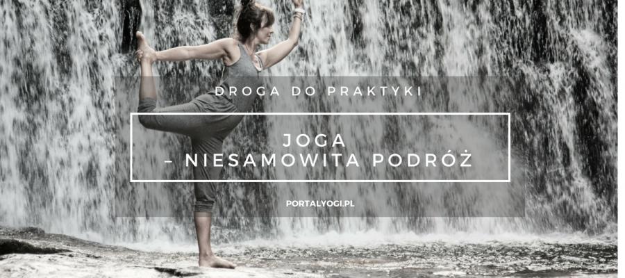 Portal Yogi article